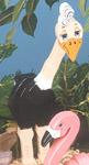 Layered Ostrich Woodcraft Pattern