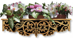 Scrolled Acanthus Window Box Pattern