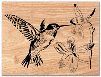 All Bird Project Plans & Patterns - Hummingbird Scroll Saw Pattern