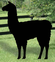 All yard garden projects llama yard shadow woodcraft for Yard shadow patterns