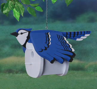 Bluejay Birdhouse Wood Project Pattern