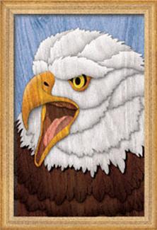 Majestic Eagle Segmentation Project Pattern