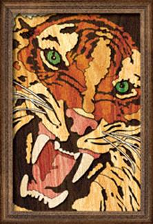 Tiger Growl Segmentation Project Pattern