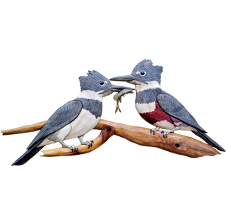 Kingfishers Intarsia Project Pattern