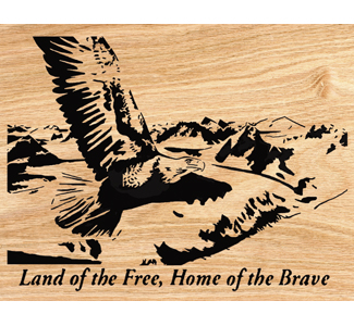 Land of the Free / Home of the Brave Project Patterns