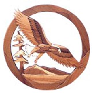 Bald Eagle Oval Intarsia Project Pattern