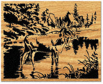 Wading Moose Project Pattern