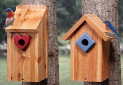 Bluebird House Duo Woodcraft Pattern