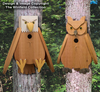 Owl & Eagle Cedar Birdhouse Plans