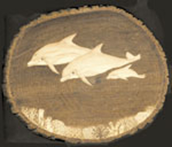 Dolphin's Woodburning Project