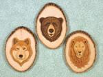 Wildlife Mug Shots Project Patterns