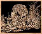 Vigilant Cheetahs Project Pattern