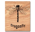 Dragonfly Project Pattern