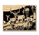 Elk Meadow Project Pattern