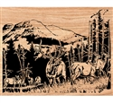 Rocky Mountain High Scrolled Art Pattern
