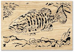 Smallmouth Bass Scroll Art Project Pattern