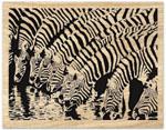 Zebra Pool Project Pattern