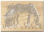 Zebras Project Patterns