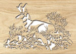 Pronghorn Project Pattern