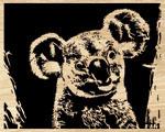 Koala Project Pattern