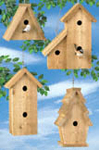 Cedar Birdhouses Woodcraft Pattern