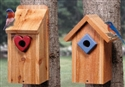 Bluebird House Duo Woodcraft Pattern