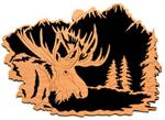 Moose Project Pattern