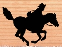 Pony Express Shadow Woodcraft Pattern