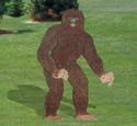 Painted BigFoot Wood Pattern