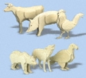 3D Animal Patterns