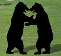 Wrestling Bears Shadow Woodcraft Pattern