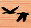 Flying Geese Shadow Woodcraft Pattern