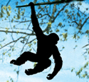 Swinging Monkey Shadow Woodcraft Pattern