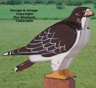 3D Life-Size Hawk Woodcraft Pattern