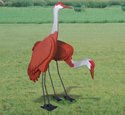 3D Life-Size Sandhill Cranes Wood Pattern