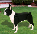 3D Life-Size Boston Terrier Woodcraft Pattern