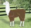 Life-Size Yard Llama Woodcrafting Pattern