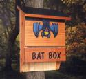 Bat House Woodcrafting Pattern