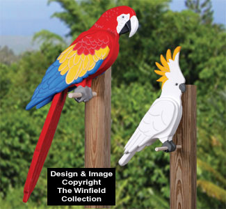 3D Tropical Birds Pattern Set