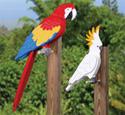 3D Tropical Birds Pattern Set