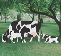 Yard Cow Collection Woodcraft Pattern Set