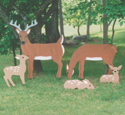 Yard Deer Wood Pattern Set