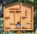 A-Mazing Squirrel House Wood Plan