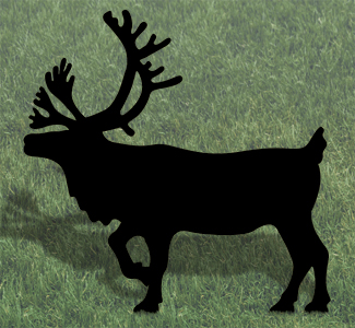 Animals caribou shadow woodcrafting pattern for Yard shadow patterns