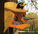 Robin Residence Woodcrafting Plan