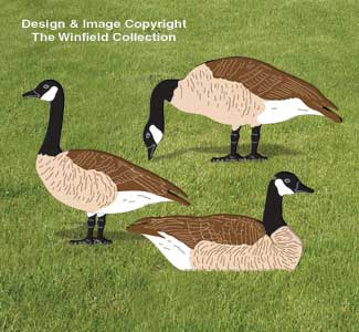 Canada Geese Woodcraft Pattern