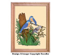 Bluebird Family Scroll Saw Art Pattern