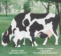 Grazin' Cow Woodcraft Pattern
