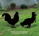 Chicken Shadow Pattern