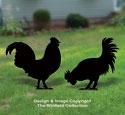 Chicken Shadow Pattern